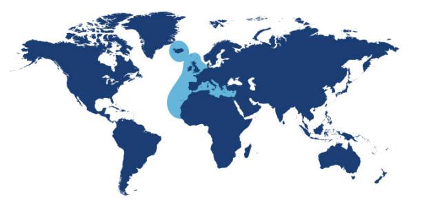 World map showing waters where Sea Bass is found.